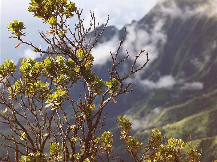 MBPhotography - Twin Falls, ID - Landscape Photography - Pihea Trail, overlooking the Na Pali CoastLine